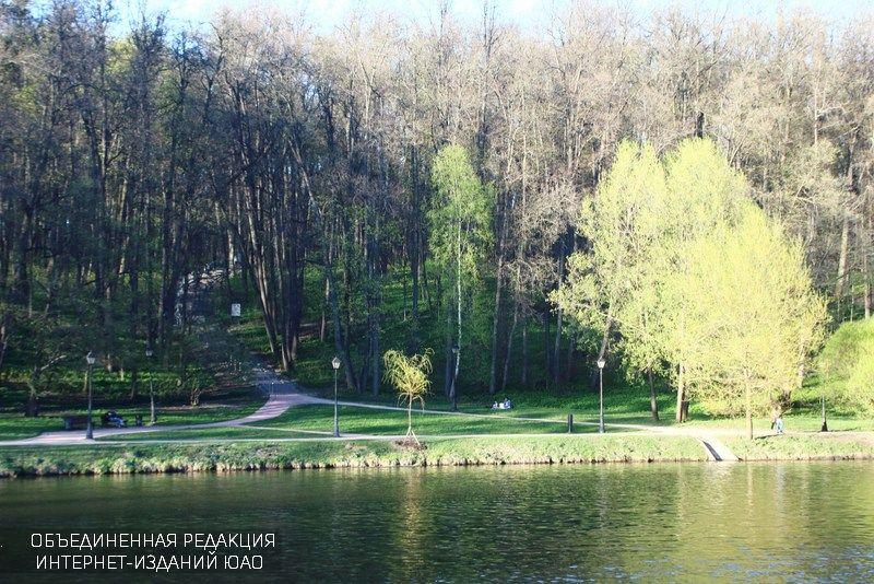 Более 1,5 тысячи москвичей назвали Бирюлевский дендропарк любимым местом
