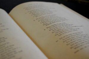 «НЕО-XXI Век» опубликовал новый выпуск «Литературной гостиной»